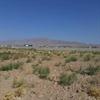 قطعه زمین ۲۰۰۰ متری باغ و ویلایی در نعمت الله
